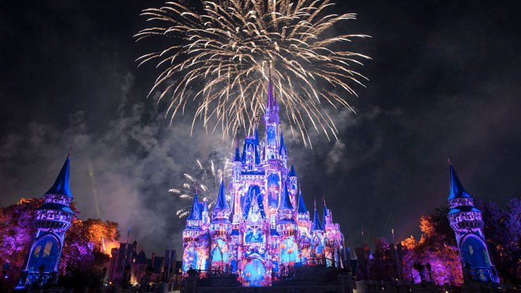 Cinderella castle with fireworks in background